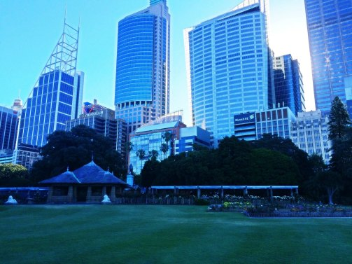 "View from Royal Botanical gardens "" CBD Sydney Area"" -"