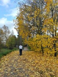 Kerava di musim gugur