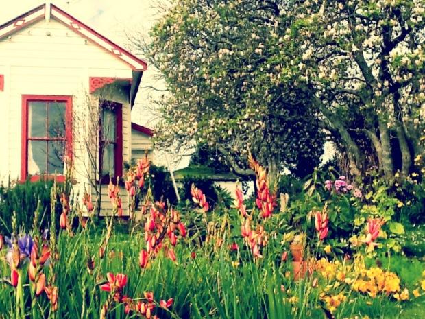 Taman depan rumah saat Spring