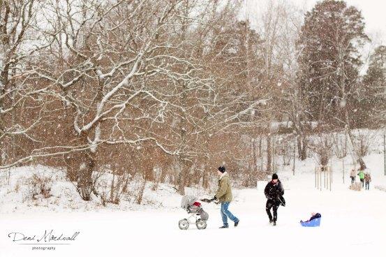 WinterActivity2