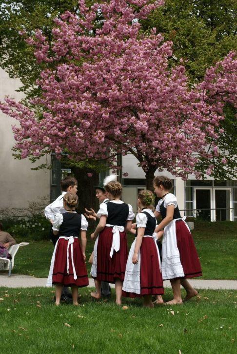 Maibaum tradisi 1 mai