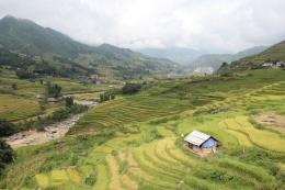 Sapa Landscape2