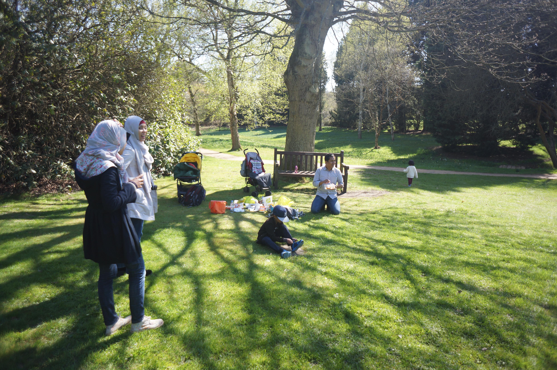 piknik-di-saville-garden
