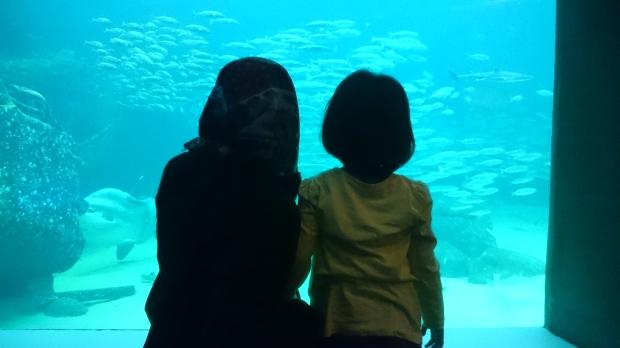 7) Menonton ikan di Nordsoen Oceanorium (2)